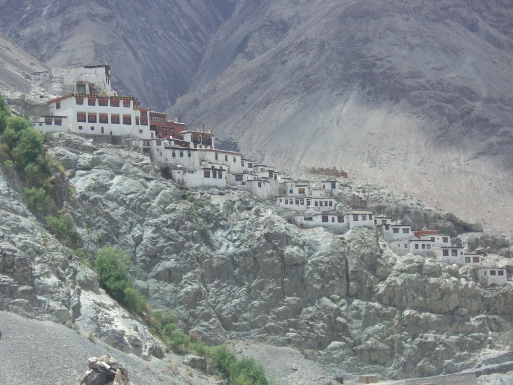 Ladakh > A Dream Come True > Important Contacts, Research & Information (5/6)